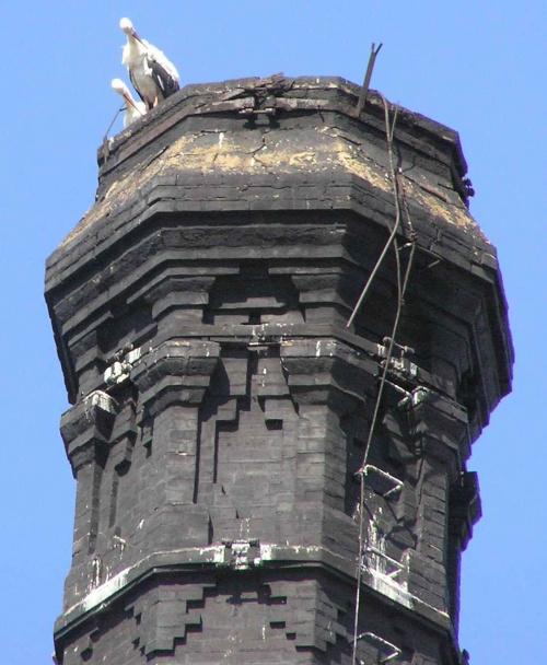 Bociany przed odlotem na najładniejszym kominie w Bielawie