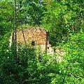Ruiny młyna koło Brzozowej Gaci #BrzozowaGać #młyn #ruiny