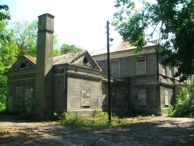 Ruiny pałacu w Olesinie #Olesin #park