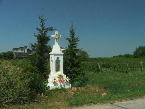 Jedziemy do Bronic #kapliczka