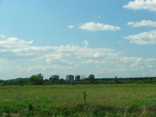 Jedziemy do Borowiny #Dęblin #łąka