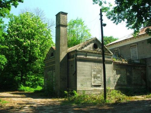 Zrujnowany pałac w Olesinie #Olesin #park #zabytek #zabytki